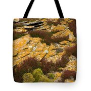 Lichened Rocks Tote Bag