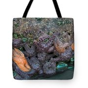 Life On The Rock Tote Bag