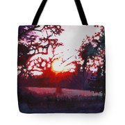 Light Grounding Tote Bag