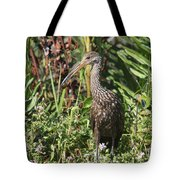Limpkin And Apple Snail Tote Bag
