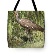 Limpkin In The Glades Tote Bag
