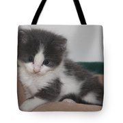 Little  Scarlow Tote Bag