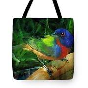 Living Rainbow Tote Bag