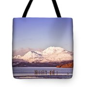 Loch Lomond 02 Tote Bag