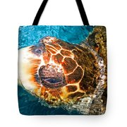 Loggerhead Sea Turtle Tote Bag