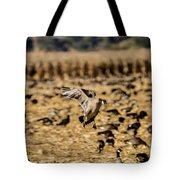 1 Lone Aleutian Landing Tote Bag