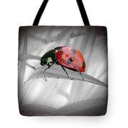 Lone Ladybug Tote Bag