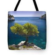 Lone Pine Tree Tote Bag