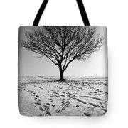 Lone Tree Winter Tote Bag