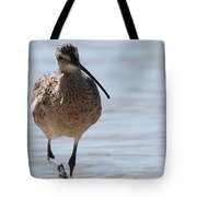 Long-billed Curlew Tote Bag