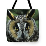 Long-eared Owl Up Close Tote Bag