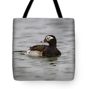Longtailed Duck Tote Bag