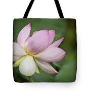 Lotus Dance Tote Bag