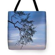 Low Angle View Of Tree At Dawn, Dark Tote Bag