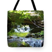 Lower Granite Falls 1 Tote Bag