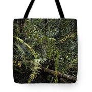 Loxahatchee Refuge-4 Tote Bag