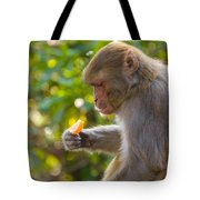 Macaque Eating An Orange Tote Bag