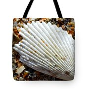 Macro Shell On Sand Tote Bag