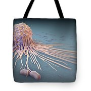 Macrophage Fighting Bacteria Tote Bag