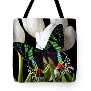 Madagascar Butterfly Tote Bag