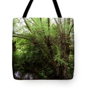 Magical Tree In Forest Tote Bag