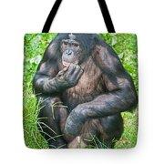 Male Bonobo Tote Bag