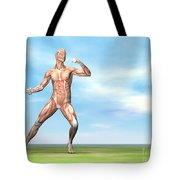 Male Musculature In Fighting Stance Tote Bag