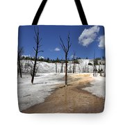 Mammoth Hot Spring Area Tote Bag