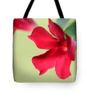 Mandevilla Named Sun Parasol Crimson Tote Bag