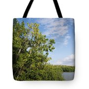 Mangrove Forest Tote Bag by Carol Ailles