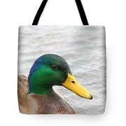 March Mallard  Tote Bag
