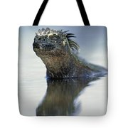 Marine Iguana Galapagos Islands Tote Bag