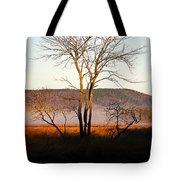 Marsh Tree Reflections Tote Bag