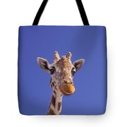 Masai Giraffe, Serengeti, Africa Tote Bag