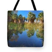 Mccallum Pond - Coachella Valley  Tote Bag