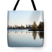Michigan Wetland Tote Bag