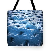 Microscopic View Of Dentine Tote Bag