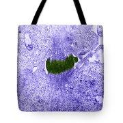 Midbody In Mitosis, Tem Tote Bag