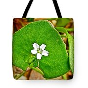 Miner's Lettuce In Park Sierra Near Coarsegold-california  Tote Bag