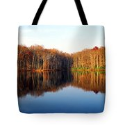 Mirror Lake Panoramic Tote Bag