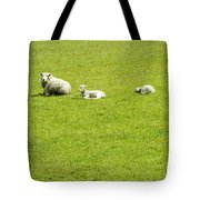 Mom And Kids Tote Bag
