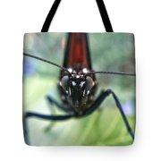 Monarch Stare Tote Bag