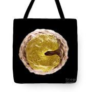 Monocyte Cell Tote Bag