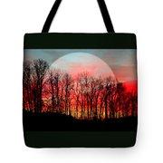 Moon Dance Tote Bag by Karen Wiles
