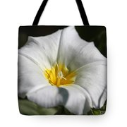 Morning Glory Named White Ensign Tote Bag