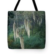 Moss Hanging Over The River Tote Bag