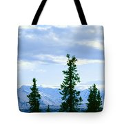 Mount Mckinley, Alaska Tote Bag