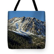 Mount Tom Tote Bag
