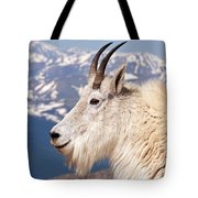 Mountain Goat Portrait On Mount Evans Tote Bag