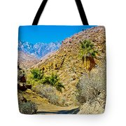 Mountain Peaks From Lower Palm Canyon Trail In Indian Canyons Near Palm Springs-california Tote Bag